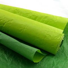 Бумага упаковочная Эколюкс (жатая) Темно-зеленый / Салатовая, 70 см*5 м