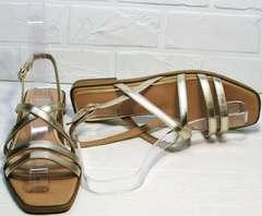Летние женские сандалии босоножки квадратный носок Wollen M.20237D ZS Gold.