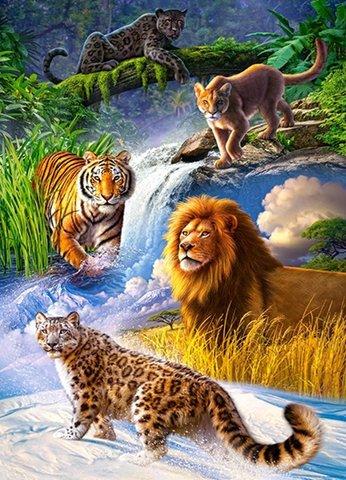 Картина раскраска по номерам 30x40 Сбор хищников