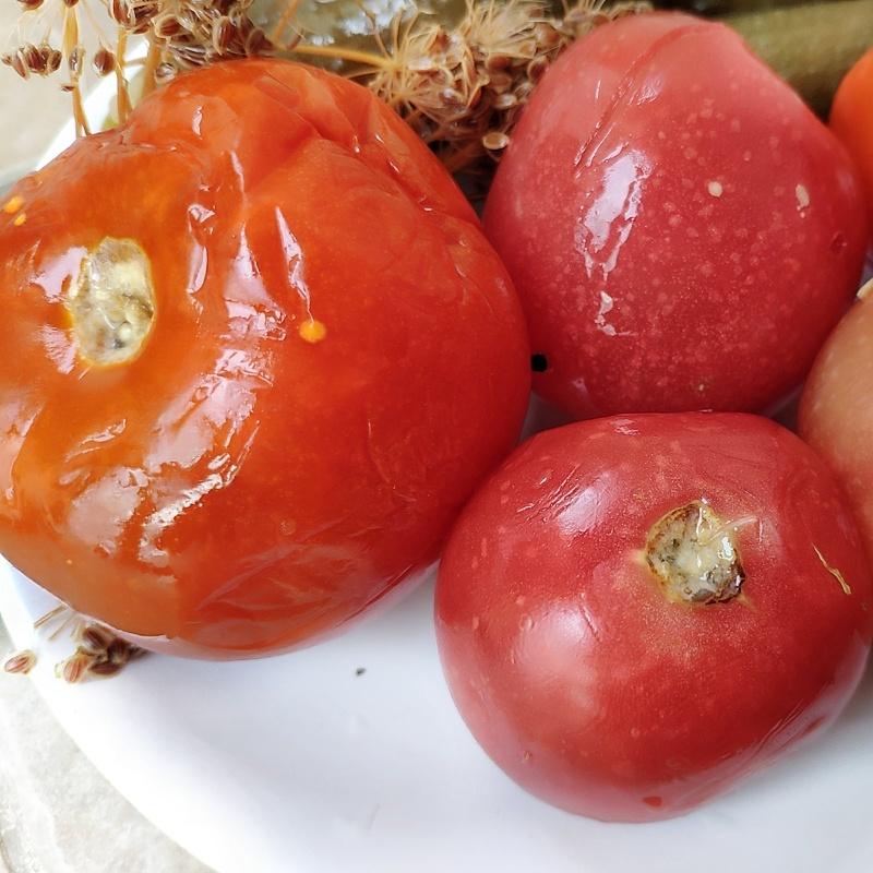 Фотография Помидоры соленые (1 кг) купить в магазине Афлора