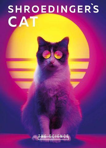 Тетрадь. Shroedinger's Cat