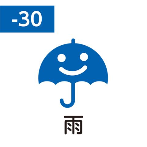 Pilot FriXion Stamp (雨 / ame / дождь)