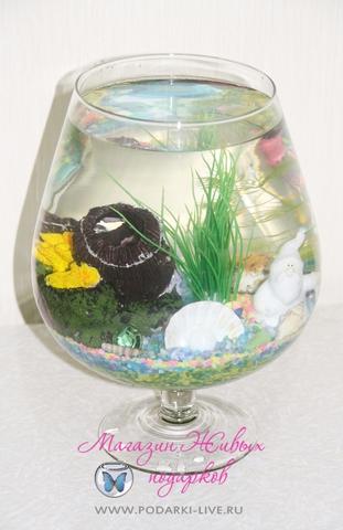 Мини аквариум бокал 5 л с