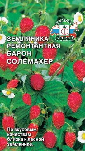 Семена Земляника Барон Солемахер