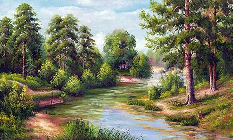 Картина раскраска по номерам 30x40 Спокойная речка в лесу