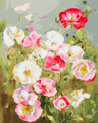 Нежные цветы- раскраски  по номерам