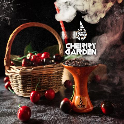 Табак Burn BLACK 20 г Cherry Garden