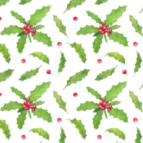 Рождественский остролист