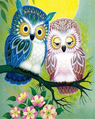 Картина раскраска по номерам 30x40 Две совы на ветке