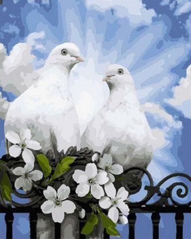 Картина раскраска по номерам 30x40 Белые голуби