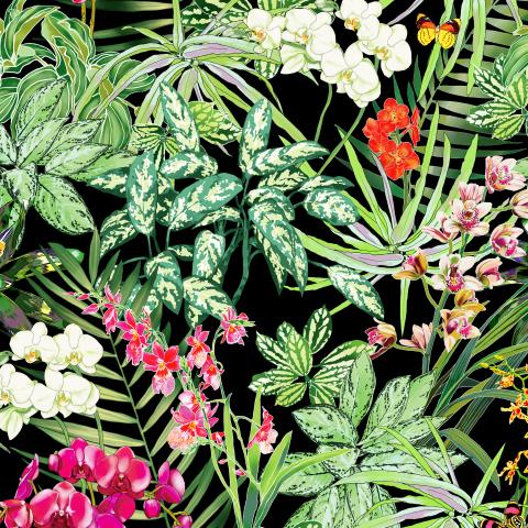 тропические растения и орхидеи на черном фоне