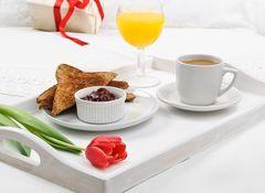 Картина раскраска по номерам 40x50 Завтрак в постель