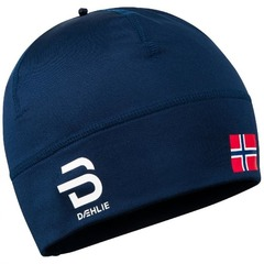 Шапка Bjorn Daehlie Hat Polyknit Flag Estate Blue