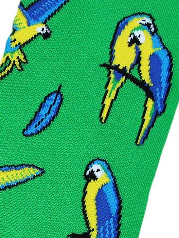 Носки с попугаями