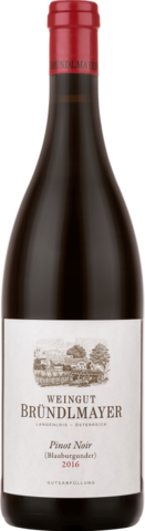 Weingut Brundlmayer Pinot Noir (Blauburgunder)