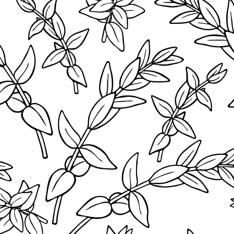 Веточки эвкалипта на белой ткани