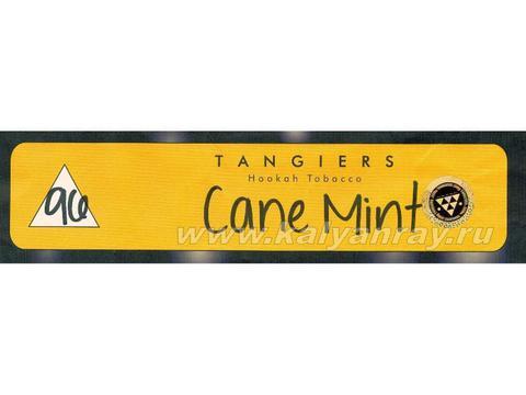 Tangiers Noir Cane Mint