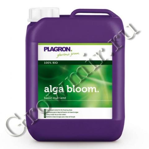 Plagron Alga Bloom 20 L