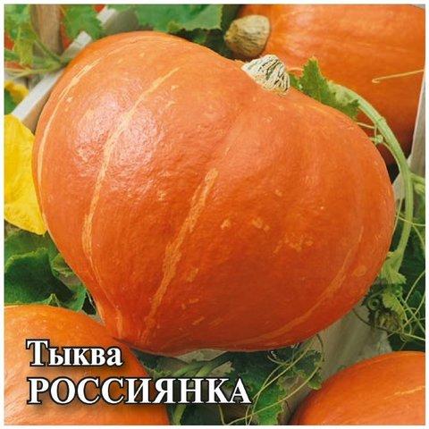Семена Тыква Россиянка