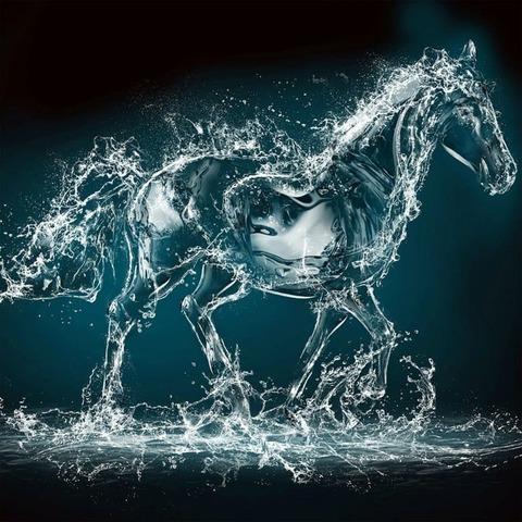 Аква 04 Конь