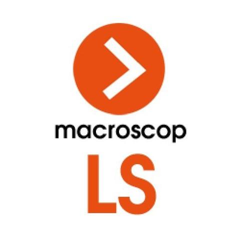 Macroscop LS, лицензия на обработку одной IP-камеры