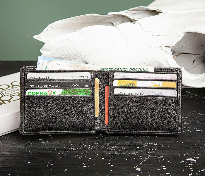 WL320-1 Классическое мужcкое портмоне для карт и купюр, «Santini»