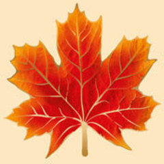 Открытка Кленовый лист, 160*160мм