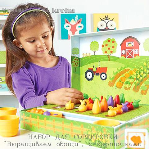 НАБОР ДЛЯ СОРТИРОВКИ «Выращиваем овощи», с карточками
