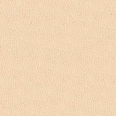 Искусственная кожа Alpha (Альфа) 2303-03