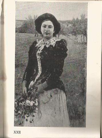 Д. Родионович