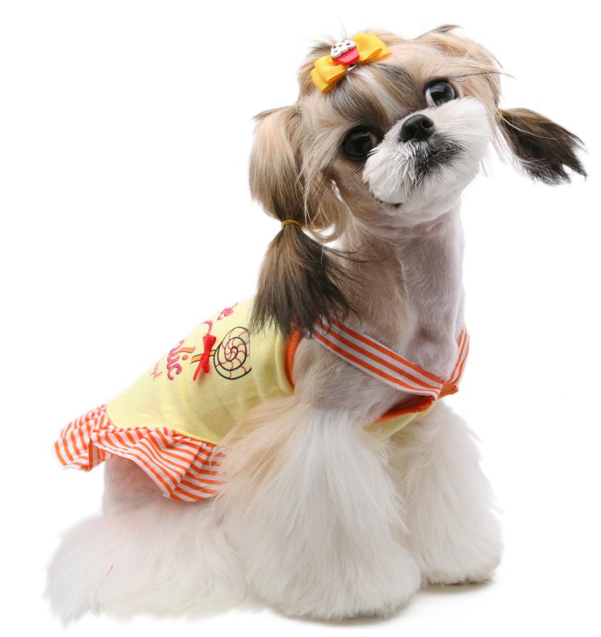 летний сарафан для малеькой собачки
