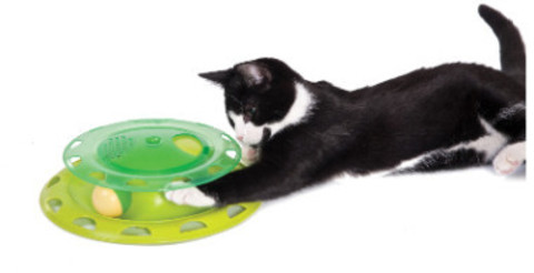 PETSTAGES TRACK WITH A CONTAINER FOR CATNIP