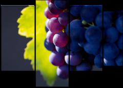 """Модульная картина """"Черный виноград"""""""
