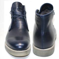 Синие зимние ботинки Ikoc 004-9 S