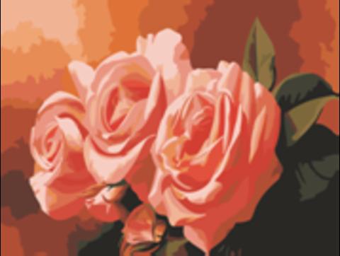Картина раскраска по номерам 30x40 Три розовые розы