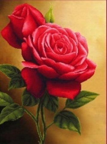 Алмазная Мозаика 30x40 Розовые розы вблизи (арт. GB70194)