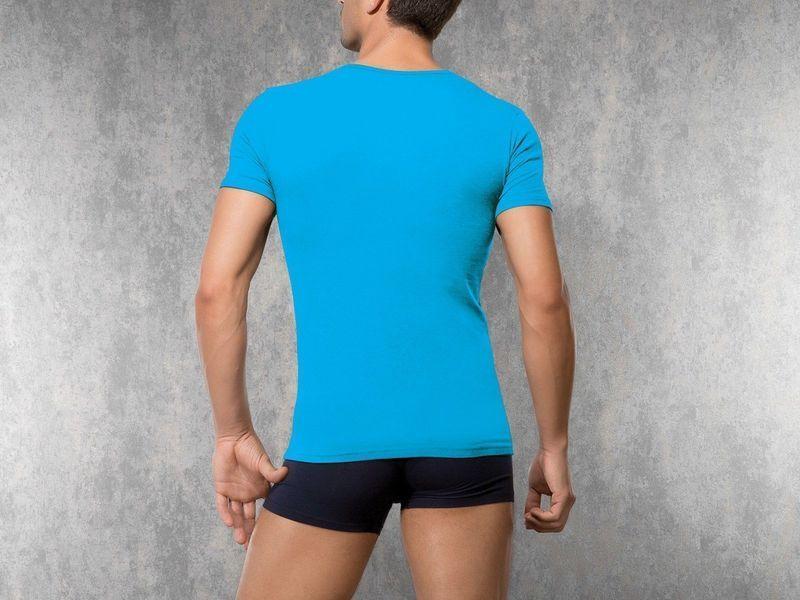 Мужская футболка бирюзовая Doreanse 2820