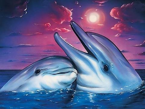 Картина раскраска по номерам 30x40 Влюбленная пара у берега