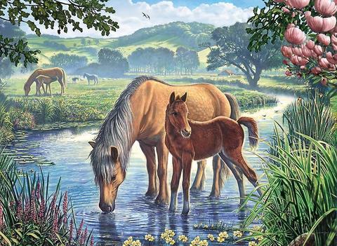 Картина раскраска по номерам 30x40 Лошади на водопое