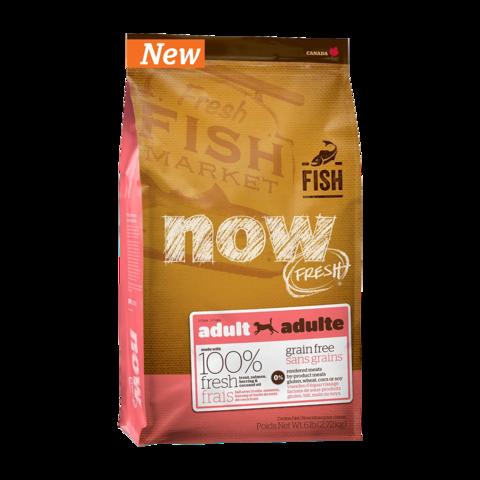 Now Fresh Сухой корм для взрослых собак с чувствительным пищеварением с форелью и лососем беззерновой