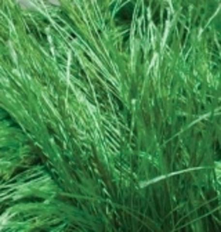 Пряжа Decofur Alize зеленый (ярко) 595