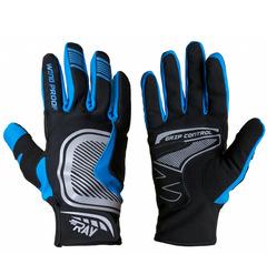 Лыжные перчатки Ray Про синий