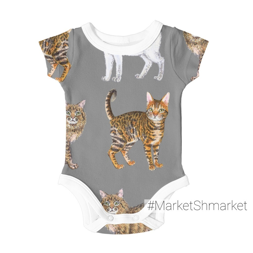 Породистые котики на сером. Purebred cats on grey