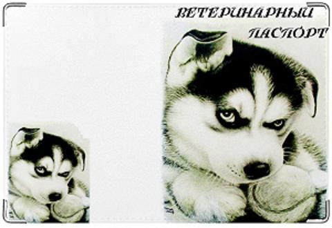 """Обложка на ветеринарный паспорт """"Хаски"""" (1)"""