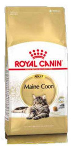 Корм для кошек породы Мейн-кун
