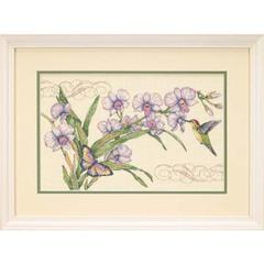 DIMENSIONS Орхидеи и колибри (Orchids and Hummingbird)
