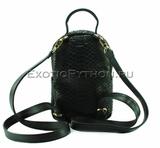Рюкзак из кожи питона BG-273