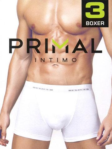 Комплект мужских трусов B1200 Boxer (3 пары) Primal