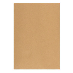 Пакет Multipack С4 из крафт-бумаги 100 г/кв.м стрип (50 штук в упаковке)