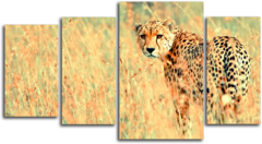 """Модульная картина""""Степной гепард"""""""